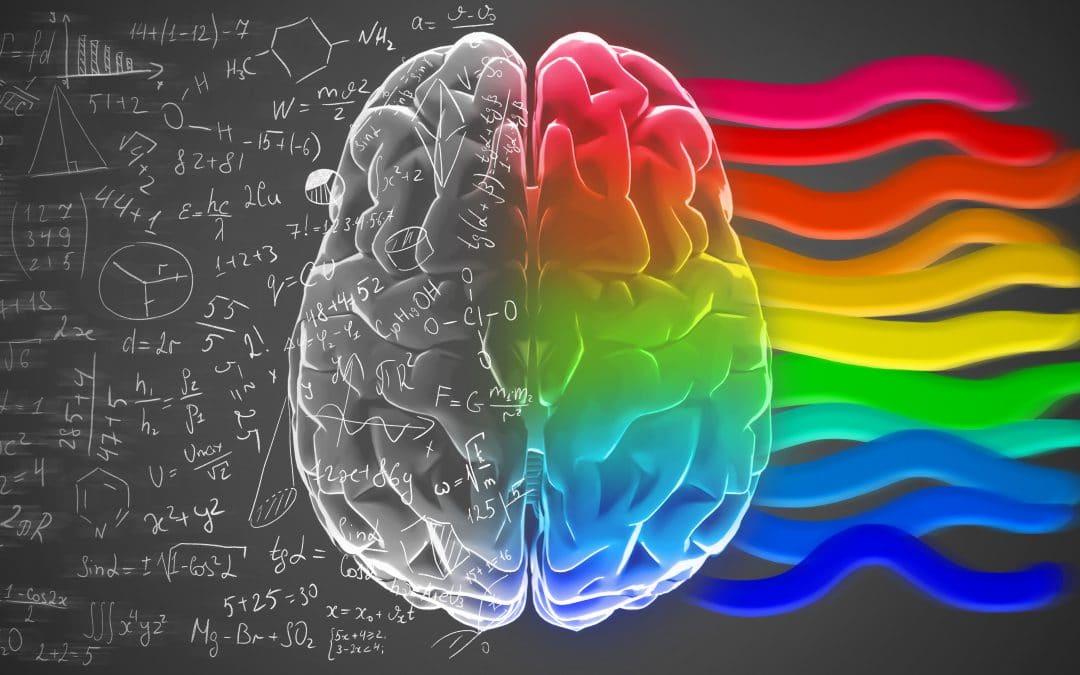 Rechte / linke Gehirnhälfte – oder die volle Nutzung des Mitarbeiterpotentials